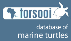 TORSOOI - South West Indian Ocean Marine Turtle Database